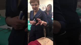 Висцеральный массаж семинар 11