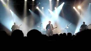 Element of Crime - Immer da wo du bist bin ich nie  (live)