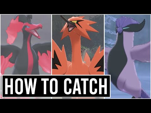 How To Catch Galarian Zapdos , Moltres , Articuno - CROWN TUNDRA