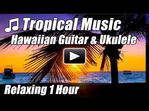 Tropical Music Hawaiian Guitar Relaxing Ukulele Acoustic Songs Hawaii Relax Studying Hour Playlist