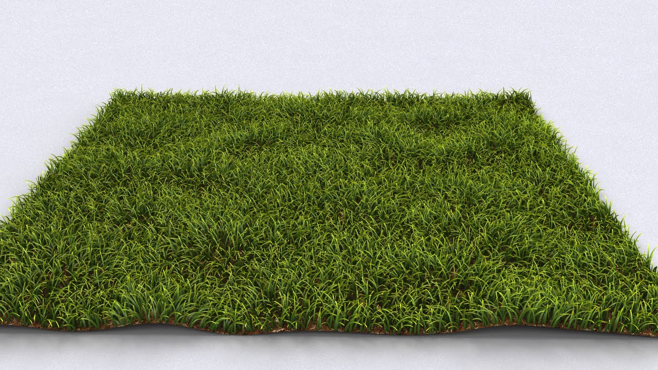 Realistic Grass In 3ds Max V Ray Fur Youtube
