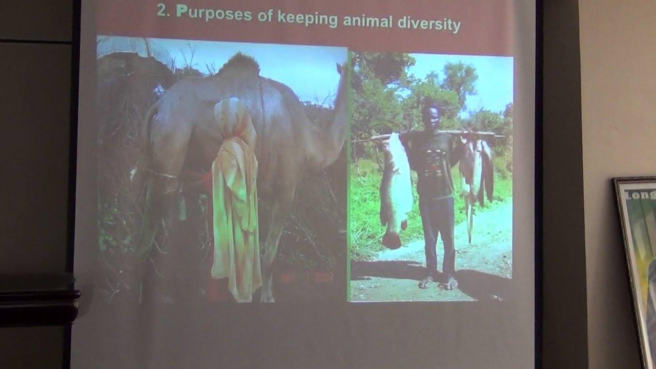 animal biodiversity and conservation pdf