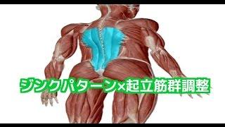 理学療法士 リハビリ 筋膜リリース 【新発見】硬い起立筋をジンクパターンの応用で緩める!