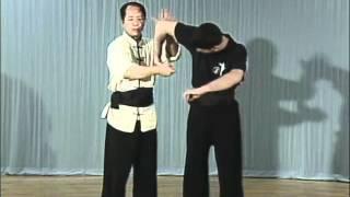 Tai Chi, Тай чи Ч5 Shou Bao Pi Pa, рычаг пальцев