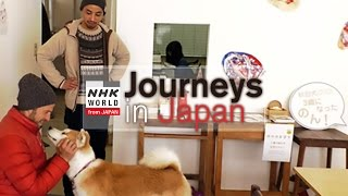 Journeys in Japan 〜Odate: The Land of the Akita Inu〜 【Short Ver.】