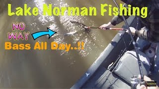Lake Norman Fishing (02-18-2018)