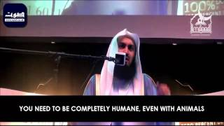 vuclip WHAT EXACTLY IS HALAL? - Mufti Ismail Menk