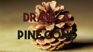 Drawing a Pine Cone for Kids (Novice Level) - Art for Foster Care