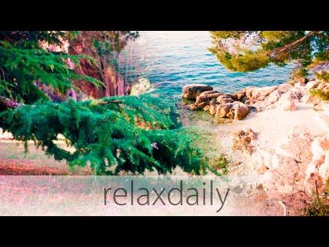 Relaxing Instrumental Music  easy, calm, light  N°105 4K