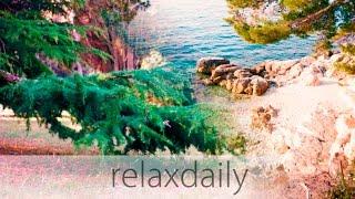 Relaxing Instrumental Music - easy, calm, light - N°105 (4K) thumbnail