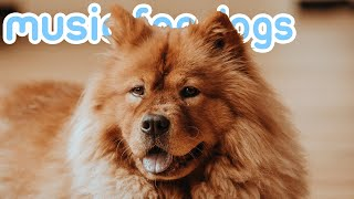 Music for Dogs! Combat Anxiety with Relaxing Dog ASMR! NEW 2020!