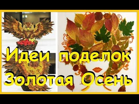 ТОП 15 идей. Осенние поделки из природных материалов. Аппликация из листьев Золотая Осень