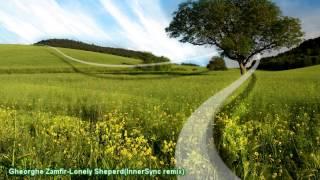 Gheorghe Zamfir - Lonely Sheperd (InnerSync remix)
