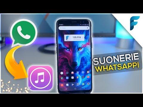 Impostare AUDIO Whatsapp come SUONERIE senza Computer! (iPhone & Android) - Ecco come! (2018) [ITA]