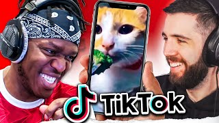 TikTok Try Not To Laugh Challenge