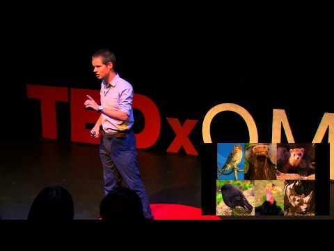 Is There Hope For Conservation? | James Borrell | TEDxQMUL