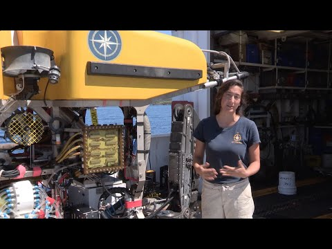 ROV Pilot Career Profile | Nautilus Live