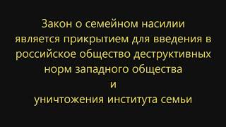 Закон о семейном насилии как прикрытие (Михеев, 2019)