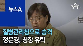 질병관리청 승격…'정은경 리더십' 초대 청장 유력 | …