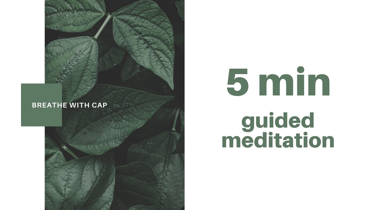 5-min Guided Meditation
