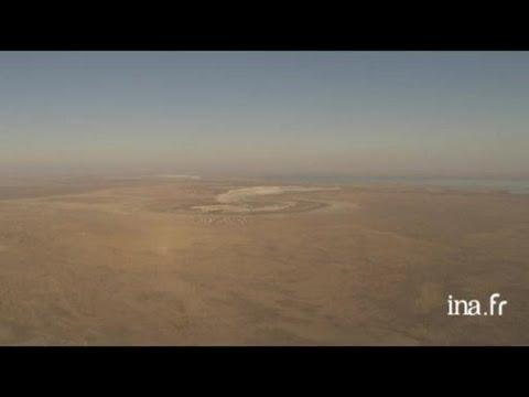 Kazakhstan : paysages de culture intensive du coton