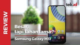 Samsung M31 itu bodinya ramping, tapi daya tahannya itu yang kami suka