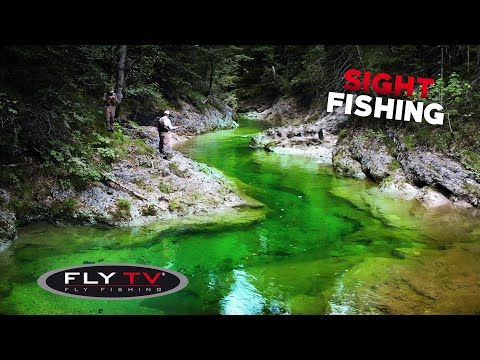 FLY TV - Sight Fly Fishing In The Alps 🇦🇹