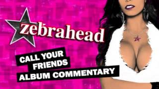 Zebrahead - Public Enemy Number One - Commentary