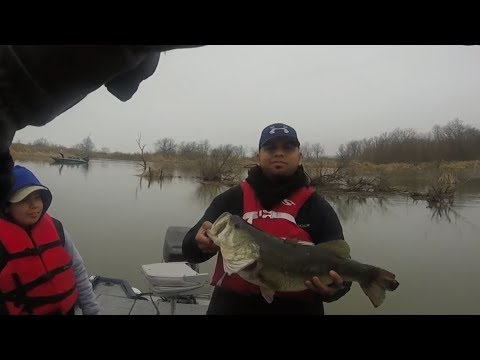 Lake Ray Hubbard Bass Fishing  (9lb!)