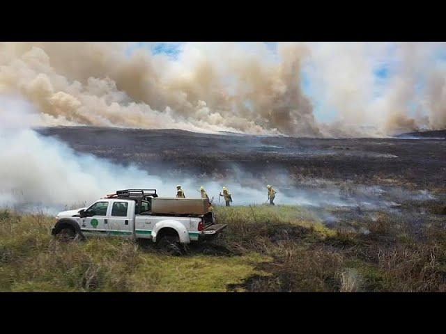 Arde la isla de Pascua | Cientos de hectáreas quemadas en incendios intencionados