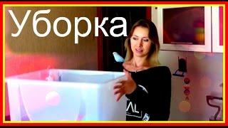 Уборка контейнера для хомяка. Как убрать контейнер хомы🙃 #хомяки