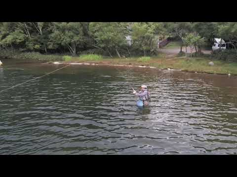 Quiet Scandinavian In Japanese Lake - Drone Shot For Fly Fishing