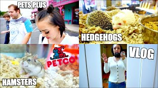 PETCO VLOG | GOING TO PET STORES | HAMSTERS & HEDGEHOGS