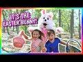 Easter Egg Hunt Gone Wrong!   We Are The Davises video