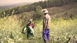 """Oskido ft Candy & Mabhiza """"Tsa Mandebele"""