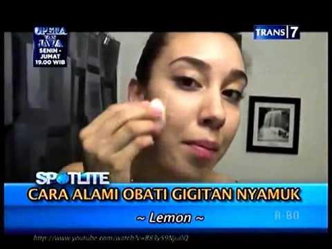 Download CARA ALAMI ATASI GIGITAN NYAMUK