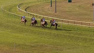Vidéo de la course PMU PRIX DE PIONSAT
