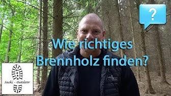 Frag Sacki: Wie richtiges Brennholz finden?