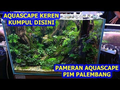 pameran-aquascape-palembang-2021
