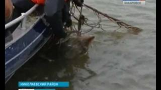 видео: Вести-Хабровск. Охота на браконьеров