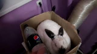 Кролики,  як не срачка  то понос!  Что за не везение