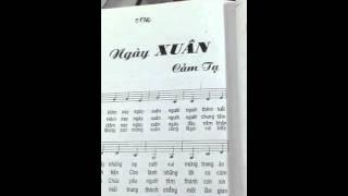 Bài hát NGÀY XUÂN CẢM TẠ
