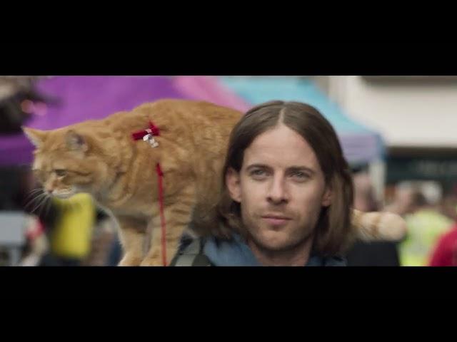 映画予告-映画『ボブという名の猫2 幸せのギフト』特報