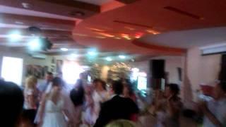 Мишина свадьба. Мичуринск.