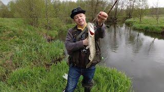 Опасная Рыбалка на Щуку на Микроречке Как поймать и Уцелеть