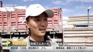 [中国财经报道]西藏日喀则:青稞收购价提高 深加工企业助力种植户脱贫| CCTV财经