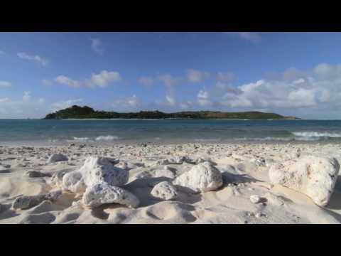 Islands Energy Program | Rocky Mountain Institute