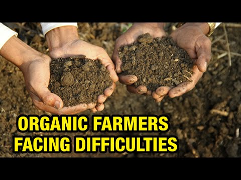 Organic Farmers difficulties to produce Quality Vegetables - V6 Special story (14-03-2015)