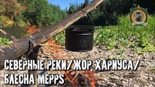 Попали на жор хариуса/Блесна Меппс/Таёжные приключения
