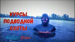 Курсы подводной охоты Новички